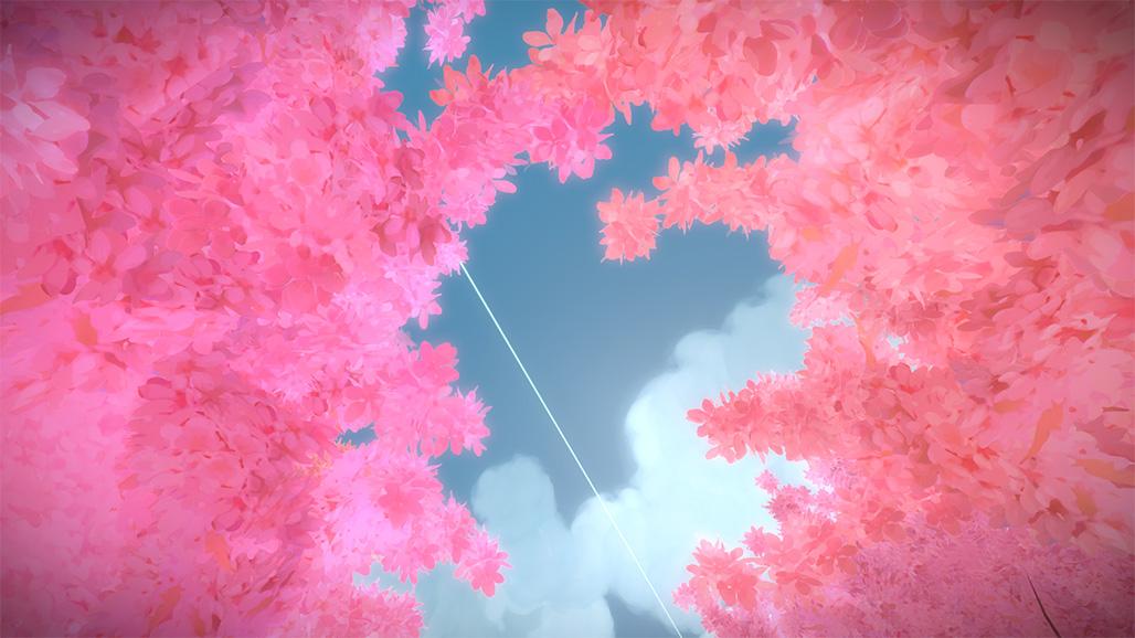 摄于樱花树下